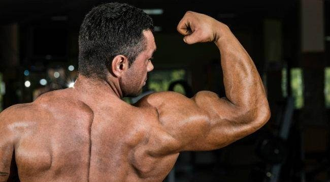 Customized Fat Loss Review – Is Kyle Leon Scam or He Really Fulfills What He Claims?
